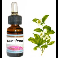 Αιθέριο έλαιο Τειόδενδρου (tea tree) 10ml