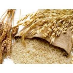 Ρύζι κατανό  Χαλάστρας χύμα 100γρ