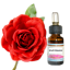 Αιθέριο έλαιο Τριαντάφυλλο 10ml